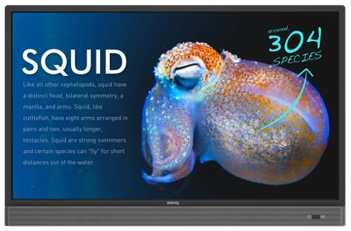Monitor dotykowy RP653K