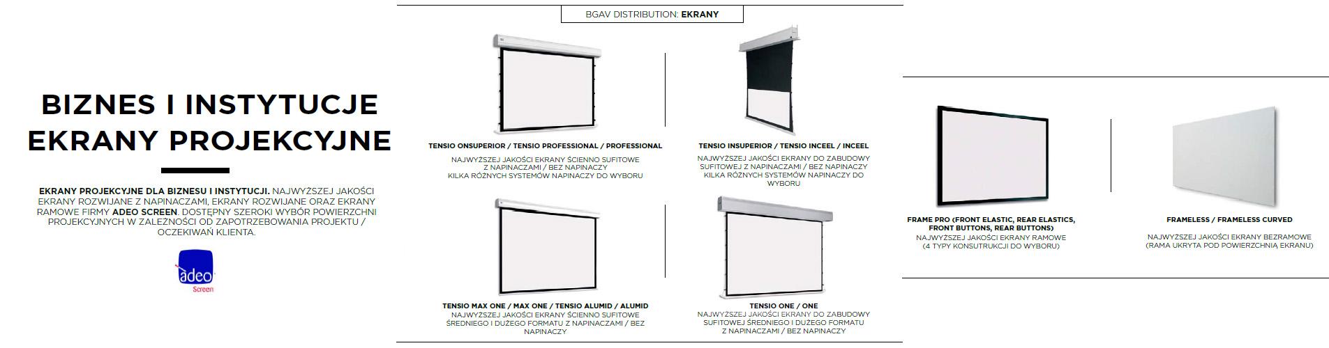 ekrany projekcyjne biznes i instytucje